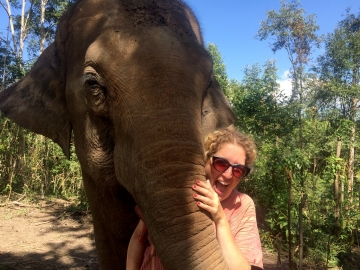 Elephants are So Friendly, The Karen Elephant Experience at Elephant Nature Park, Chiang Mai