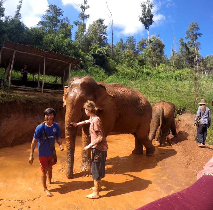 Mud Time, The Karen Elephant Experience at Elephant Nature Park, Chiang Mai